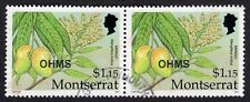 Montserrat: Caribbean Fruits (OHMS); horizontal pair of $1.15 (Mango); fine used