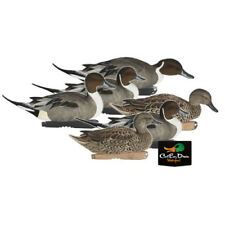 AVERY GREENHEAD GEAR GHG FFD PRO GRADE  PINTAIL FLOATING DUCK DECOYS FLOCKED