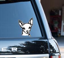 Chihuahua TuningStylingEbay Vente TuningStylingEbay Vente Stickers Stickers Stickers Chihuahua En En En Chihuahua fgy7b6
