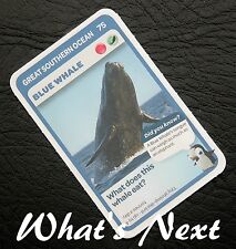 Woolworths <<AUSSIE ANIMALS>> Card 76/108 GREAT SOUTHERN OCEAN Adelie Penguin
