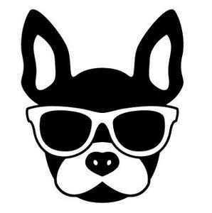 French Bulldog car sticker decal  bumper sticker funny cute sticker