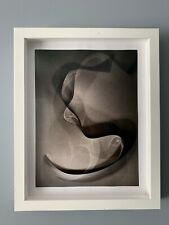 "Thomas Ruff ""Photograms 2012-2014"" ltd Ed. of 50   Hand Signed / Gursky / Struth"