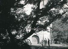 Mas de Tourvieille c. 1950 - Camargues Bouches du Rhône - DIV532