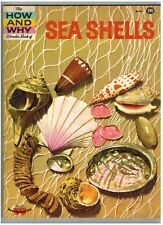 THE HOW and WHY WONDER BOOK OF SEA SHELLS #5014 - WONDER BOOKS - 1961