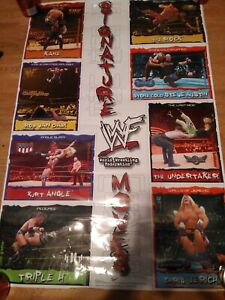 "WWF SIGNATURE  MOVES LAMINATED POSTER  22 1/2 ""x 34 "" from 2002 TRENDS"
