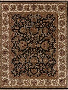 BLACK & IVORY Floral Agra Area Rug Hand-Knotted Oriental Home Decor Carpet 8x10
