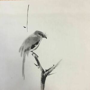 JAPANESE PAINTING HANGING SCROLL OLD JAPAN Print Picture Shrike BIRD e811
