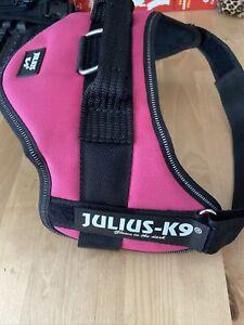 Julius K9 Harness Size 0 Pink