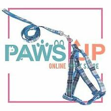 Paws Up Dog Leash Medium