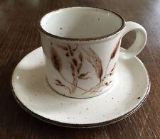 Midwinter Stonehenge Wild Oats 1 Kaffeetasse mit Untertasse