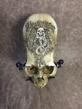 Death Eater Harry Potter Theme Human Skull Replica Carved by Zane Wylie Hogwarts