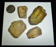 Natural Citrine Crystals Brazil 54 grams 4 Pcs Lot Reiki Crystals Chakra Stones