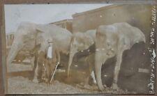 RARE 1915 BARTON & BAILEY SHOW CIRCUS ELEPHANT AND TRAINER TRAIN PHOTO