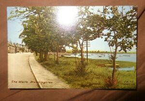 THE WALLS  Manningtree, Essex, Old Friths collo style Postcard, Unused C2