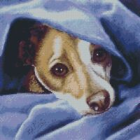 Cross Stitch Chart - Kit Jack Russell Terrier Dog - Cold Me