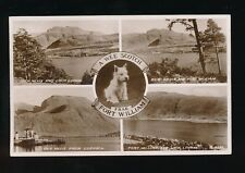 Dogs SCOTTISH TERRIER Scotland Inverness-shire Fort William M/view 1950s RP PPC