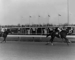 1972 Champion Racehorse SECRETARIAT Glossy 8x10 Photo Ron Turcotte Print
