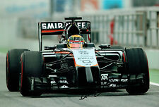 Pascal WEHRLEIN Signed Autograph 12x8 Force India Photo Autograph AFTAL COA
