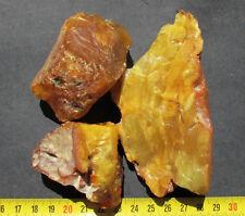 Natural Genuine Butterscotch Egg Yolk Baltic Amber Stones 179.9g.