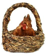Unique and Decorative Brooding Hen Resting in Basket Taxidermy Mount