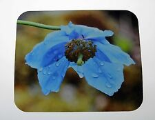Himalayan Blue Poppy Meconopsis Flower Mouse Pad
