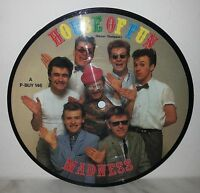 """7"""" 45 GIRI MADNESS - HOUSE OF FUN - PICTURE DISC"""
