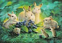Blueberry lunch Bunnies rabbits mice eat berries art Russian modern postcard