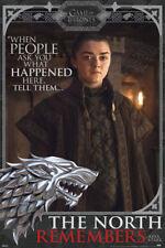 GAME OF THRONES ARYA NORTH REMEBERS 24X36 POSTER FANTASY DRAMA HBO TV SHOW STARK