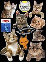 "12"" x 9"" Cats & Kitties Contour Cut Vinyl Sticker Bundle"