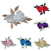 Rose Flower Leaves Embroidery Iron On Applique Patch 8*6.5cm Fashion A Hj