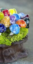 Garden Fairy Mushrooms Shroomyz  Ass. Set of 3 Miniature Ceramic Fairy Gnome MO