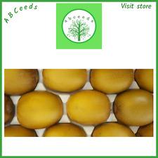 Gold kiwi fruit seeds - (Actinidia chinensis) - small scoop