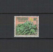 T.A.A.F. terres australes et antarctiques française un timbre ancien neuf /T1282