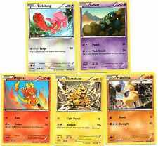 pokemon X Y 3 FURIOUS FISTS  29 VERSCHIEDENE KARTEN NAGELNEU   nur  POKEMON