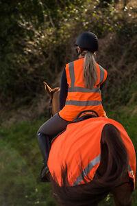 Orange Hi Vis Hi Viz Horse Exercise Sheet Reflective High Visibility Pony Cob F