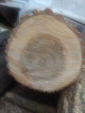 Baumscheibe 60x7 cm Tischplatte Bartisch Tisch Couchtisch Baumstamm Baumscheiben