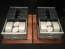 Siltech Signature SEPA monoblock Power Amplifiers - THE BEST