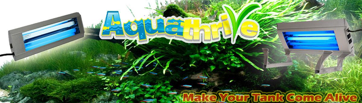 Aquathrive Aquarium Lighting
