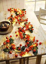 LED Lichterkette APFEL Beeren Frühjahr Herbst Tisch Deko 20 LED Blätter Laub