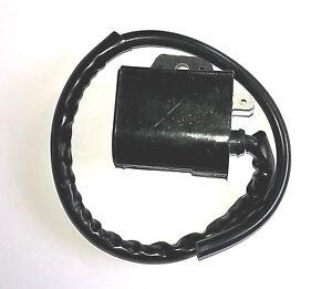 Ignition Coil For SUZUKI Eiger 400 LT-A 400 ** 2002,2003,2204,2005,2006,2007
