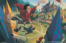 HARRY POTTER - QUIDDITCH POSTER - 22x34 BOOKS ROWLING 14151