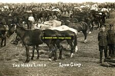 rp13931 - The Horse Lines at Lydd Army Camp , Kent - photo 6x4