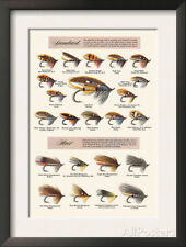 Fly-Fishing Lures: Standard and Hair Framed Art Print - 14x18.5