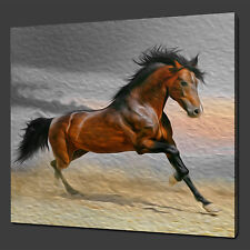 """RUNNING BROWN HORSE ANIMAL PICTURE BOX CANVAS PRINT 12""""x12"""""""" FREE UK POSTAGE"""