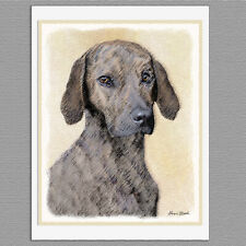 6 Plott Hound Dog Blank Art Note Greeting Cards