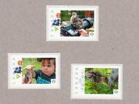 TURKEY CHICK = Set 3 UNIQUE Picture Postage stamps MNH Canada 2016 [p16/08btu3]