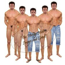 Anatomically Correct Paper Doll Articulated Tattoo Muscle Hunk Jeans & Sandals