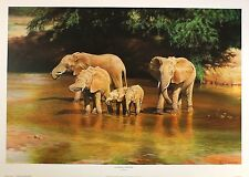 "NORMAN WARD ""Drinking Companions"" ELEPHANTS river NEW! SIZE:51cm x 76cm  RARE"