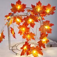 2M LED Lighted Fall Autumn Pumpkin Maple Leaves Garland Halloween Xmas Decors