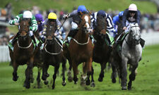 Betfair System, £7000 to £10 stakes 2019 Inc Betangel Automation File - Trading